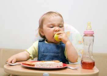 Comida para bebes de 1 año